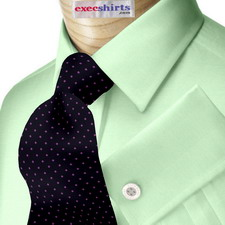 Light Green Broadcloth Dress Shirt With Neck Tie