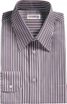 Brown/Aqua Striped Dress Shirt