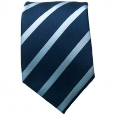 Blue/Blue Striped Neck Tie