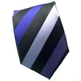 Purple Multi Striped Neck Ties With Neck Tie